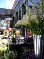 An Outdoor Flower Market... Starbright Flowers Everywhere!