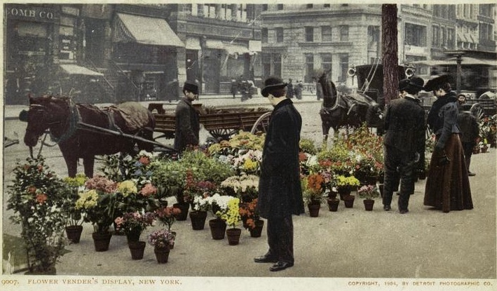 1904 flower district postcard