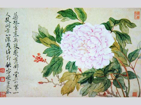 painted Peony, Yun Shouping, Qing Dynasty