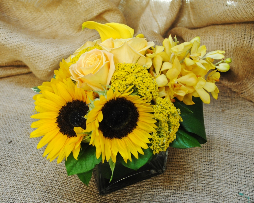Starbright floral design yellow