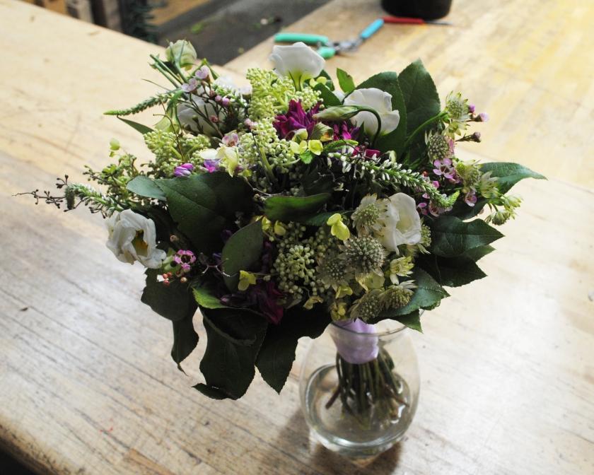 Starbright-Flowers18