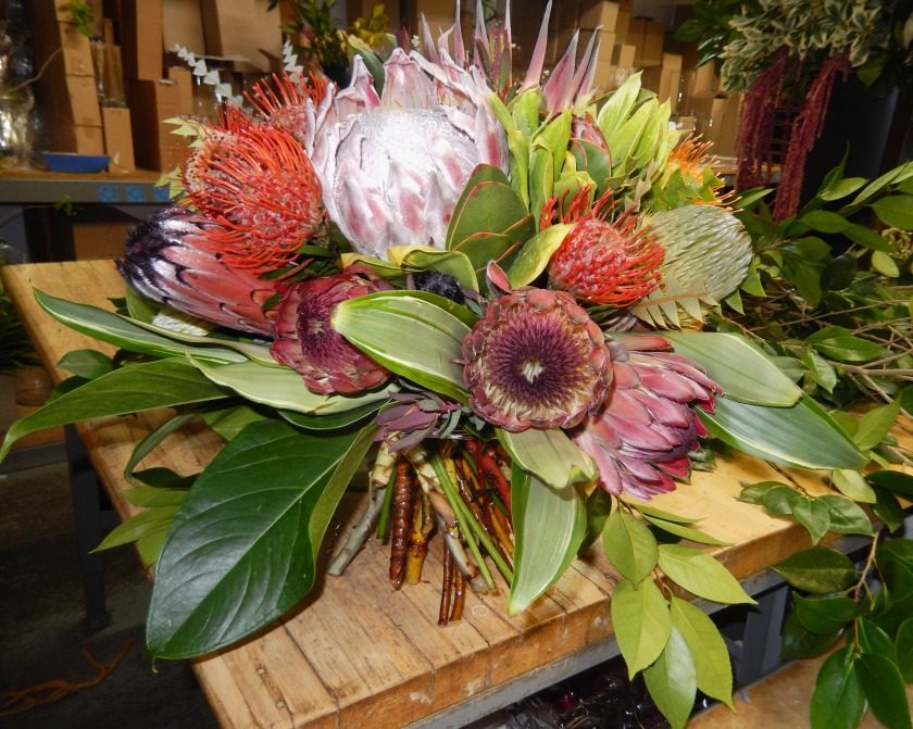 Starbright Floral Design Protea Bouquet