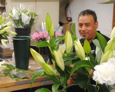 Carlos on flower prep
