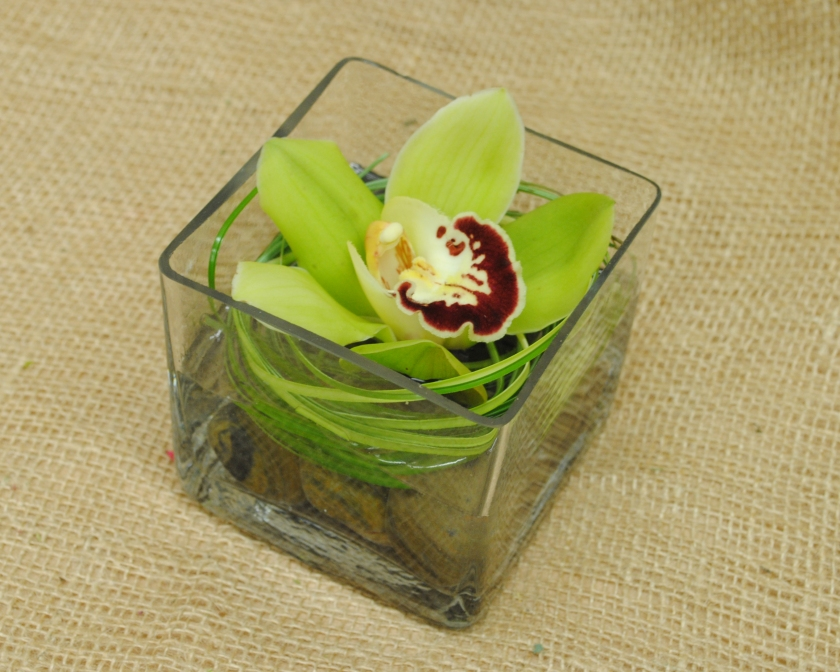 Green cymbidium  centerpiece