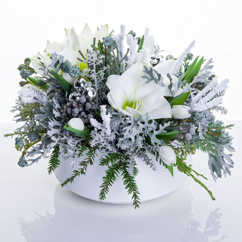 Inspired by the intricate allure of frost, this composition will only thrive inside where it's warm!
