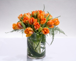 The gentle elegance of tulips is displayed in their full glory with a clear glass vase.
