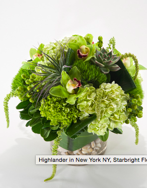 Hydrangea in Greenery is a perfect foil for pops of orchids.